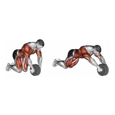 Roda de Exercicios Abdominais